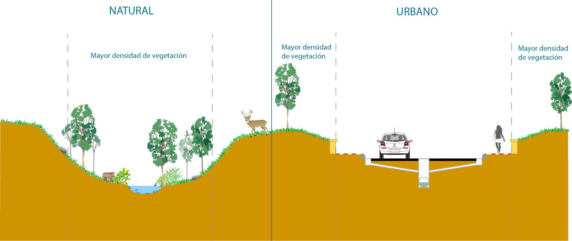 Drenaje urbano-Drenaje natural