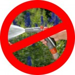 Prohibido regar con manguera