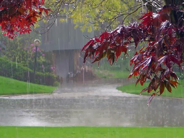 Cómo dimensionar bien un depósito de pluviales