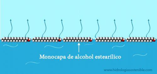 monocapa-alcohol-estearilico