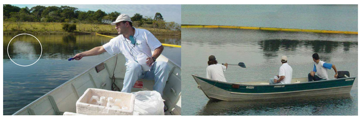 stearylAlcohol-Trials carried out by Marcos Gugliotti in Brazil-200px